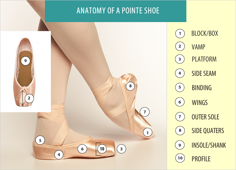 Pointe Shoes - Finding the Perfect Fit